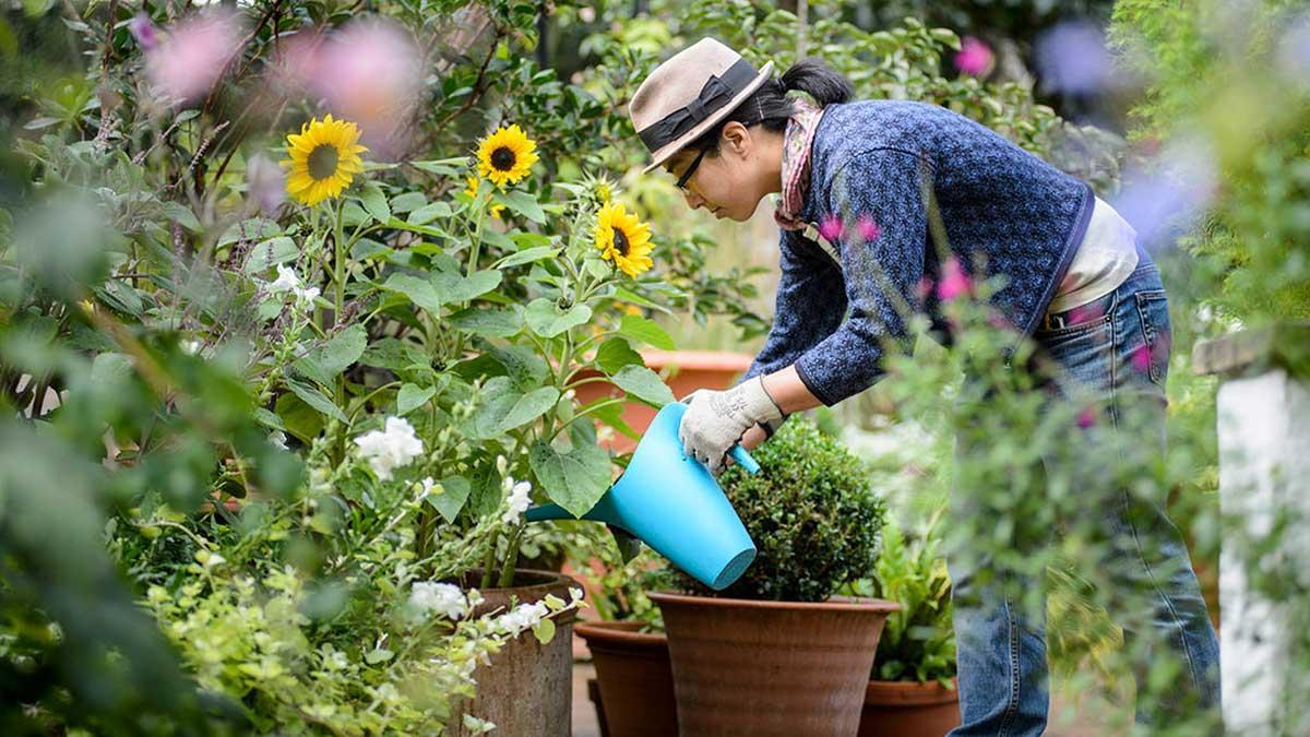 Jackson County Master Gardener Association Your Rogue Valley